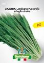 CICORIA Catalogna Puntarelle a foglia stretta